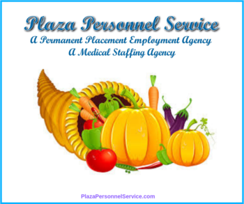 Plaza Personnel Service Medical Staffing Agency San Diego